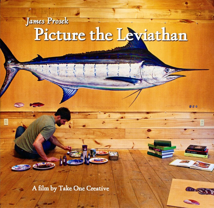 Picture The Leviathan - DVD