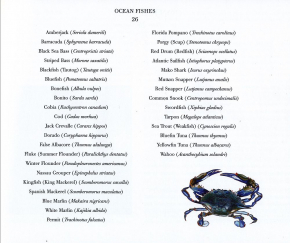 Ocean Fishes - book by J. Prosek,  deluxe edition