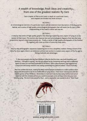Flies as Art - Buch von Paul Whillock