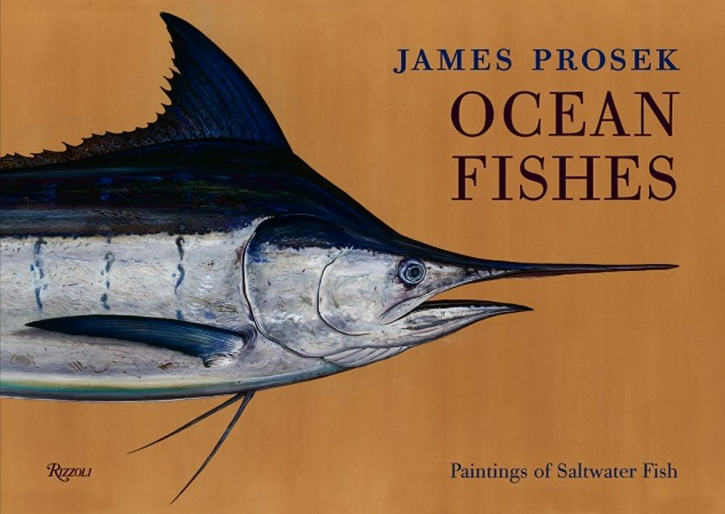 Ocean Fishes - Book