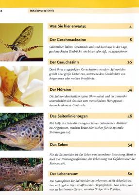 Biologie des Fliegenfischens - Buch