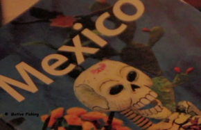 Geofish Vol. 1, Mexico - DVD