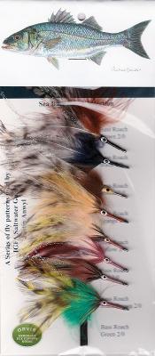 Wolfsbarsch und Striper mit der Fliege
