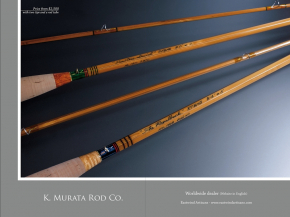 Mostly Bamboo - book